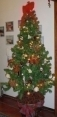 Brazilian-christmas-tree